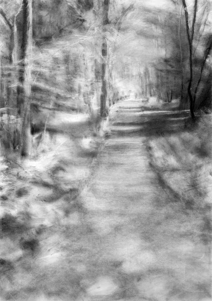 Evocative charcoal drawing of a path through the woods with light filtering through the trees.