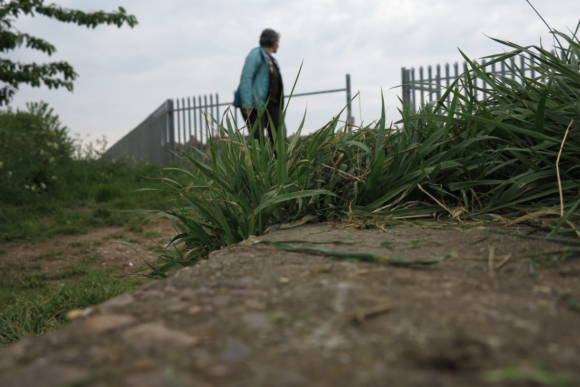 The foreground of the photograph concentrates on a concrete step with grasses growing up between the cracks in the ground. In the background and top half of the photograph there is a figure looking away from the camera towards a gap in a tall metal fence. The sky is overcast and grey the figure is wearing a pale blue jacket.